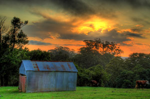 tin-shed-sunset